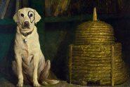 Andrew Wyeth8