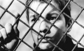 400blows