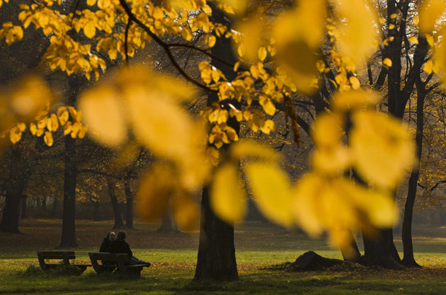People sit on a bench in park of Schoenhausen Castle on sunny autumn day in Berlin